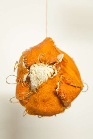 Detail of Sewn Orange