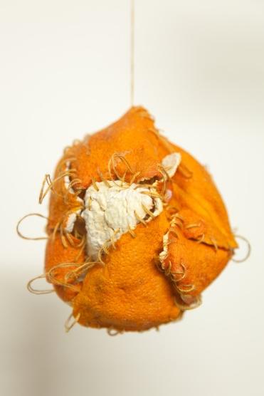 Detail of Sewn Orange